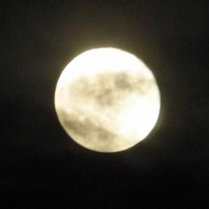 de Maan (c) foto margot van den boer