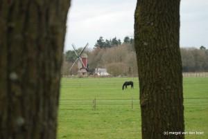 De nagebouwde molen op Leenderstrijp (c) margot van den boer