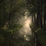 Najaars-fotowedstrijd De Groote Heide