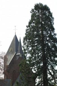 RK Kerk Heeze (c) margot van den boer