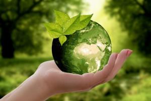 Duurzaamheid foto Annca