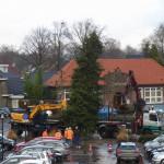 Kerstboom Heeze